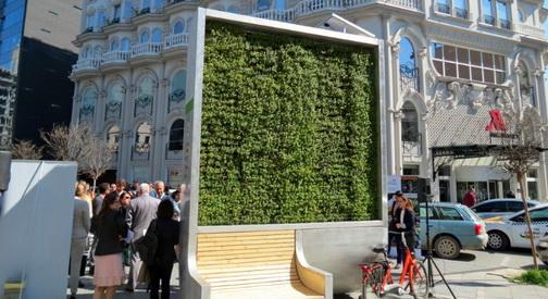 Поставен еколошки билборд  City tree  во центарот на Скопје